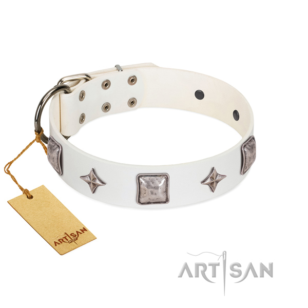High quality natural leather dog collar with adornments for daily walking