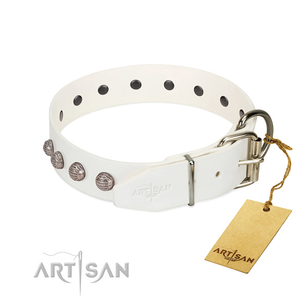 Leather dog collar of soft material with impressive adornments