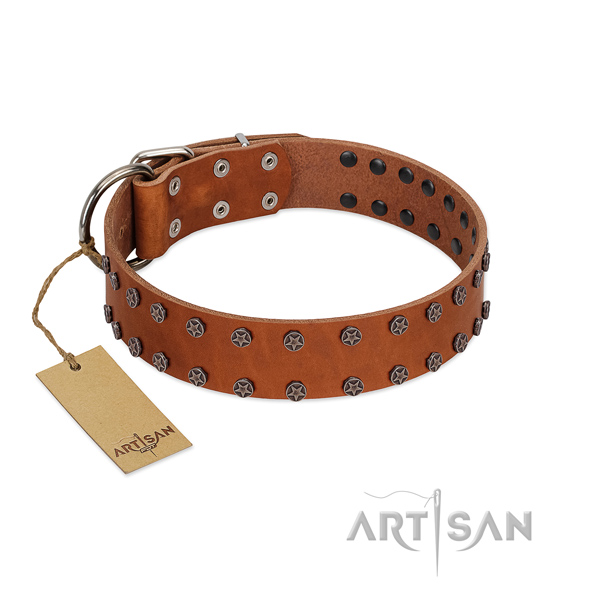 Easy wearing full grain genuine leather dog collar with stylish studs