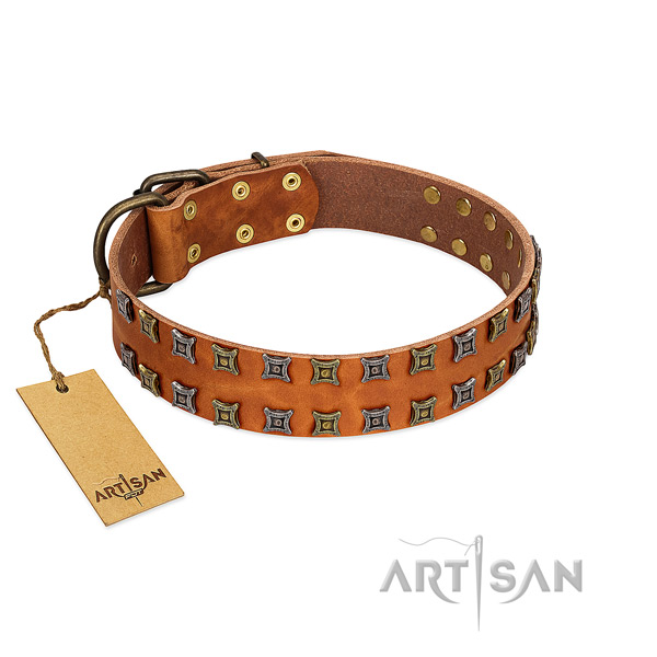 High quality natural leather dog collar with embellishments for your four-legged friend