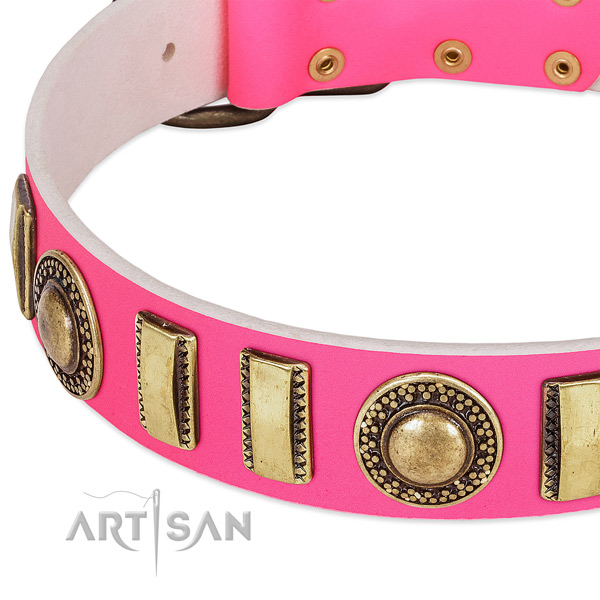 Top notch leather dog collar for your impressive four-legged friend