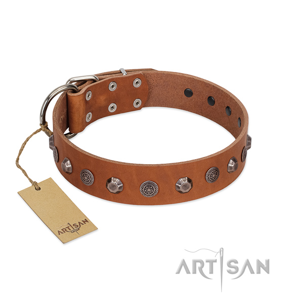 Top quality full grain natural leather dog collar