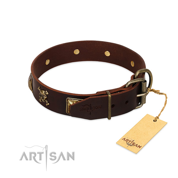 Quality natural leather dog collar with inimitable studs