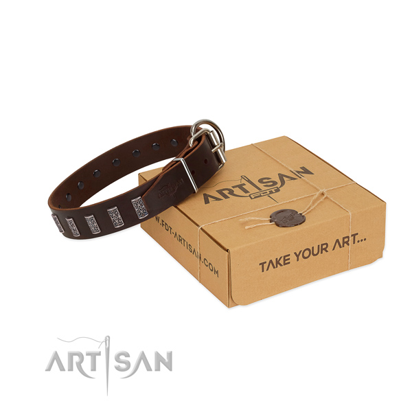 Corrosion proof buckle on leather dog collar for stylish walking your four-legged friend