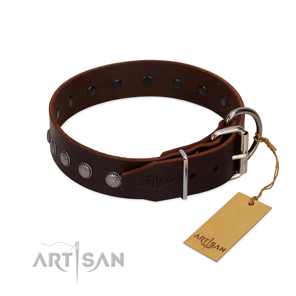 Exquisite full grain leather collar for fancy walking your pet