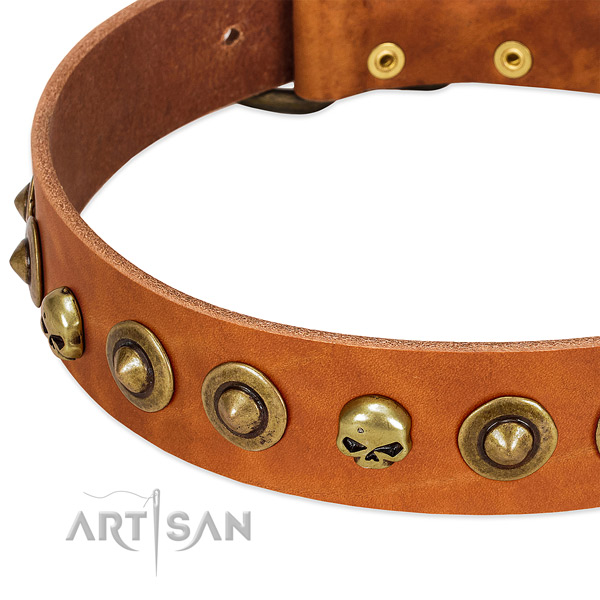 Trendy adornments on genuine leather collar for your doggie