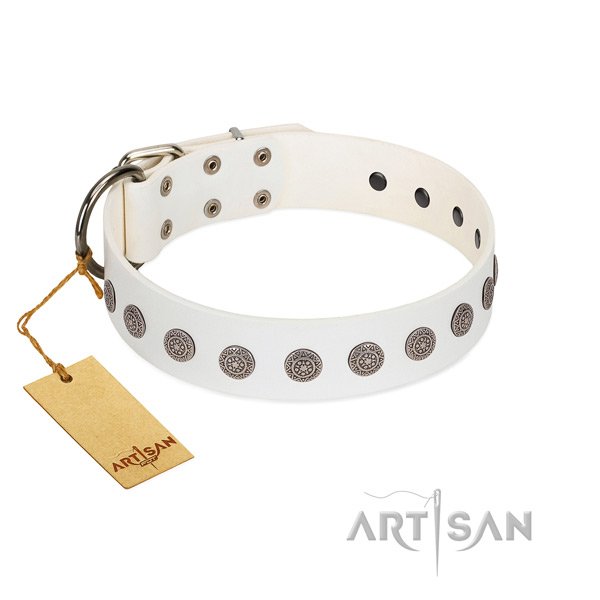 Amazing decorations on full grain leather collar for easy wearing your pet