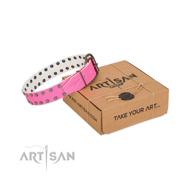Best quality natural leather dog collar with adornments for your attractive canine
