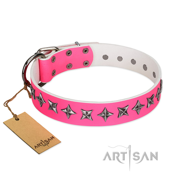 Daily use dog collar of high quality leather with decorations