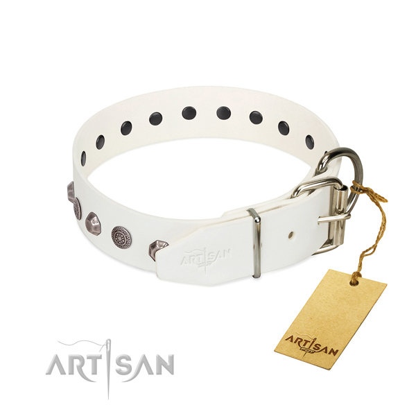 Rust resistant hardware on full grain leather dog collar for daily walking your canine