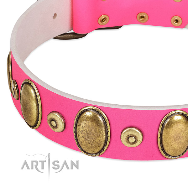 Gentle to touch full grain leather collar with rust-proof embellishments for your doggie