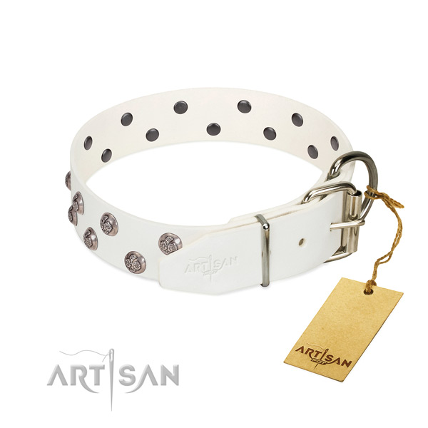Rust resistant buckle on adorned full grain leather dog collar