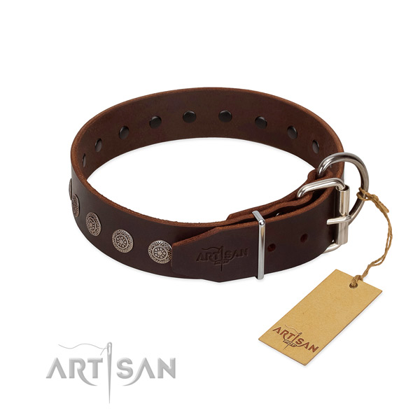 Unique leather collar for your canine