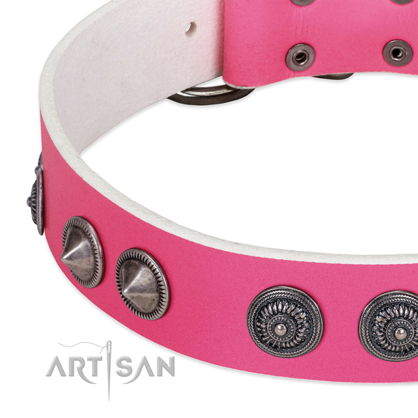 Designer leather collar with studs for your doggie