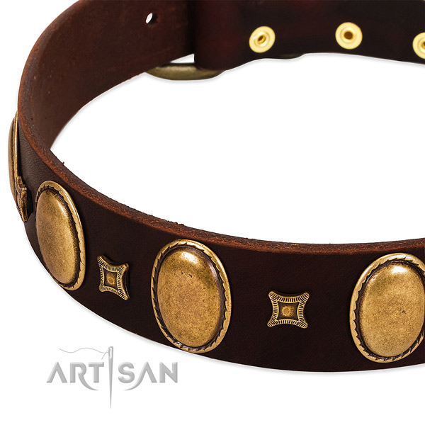 Natural leather dog collar with reliable buckle for daily use