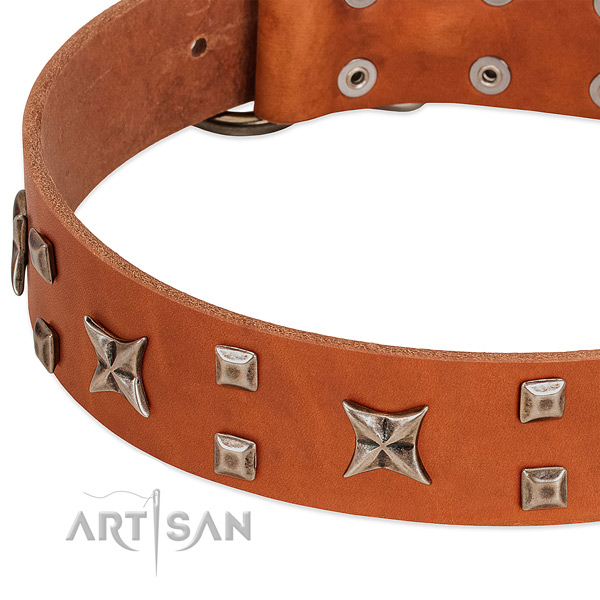 Reliable genuine leather dog collar with studs for comfortable wearing