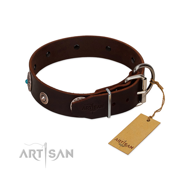 Exquisite adorned full grain leather dog collar