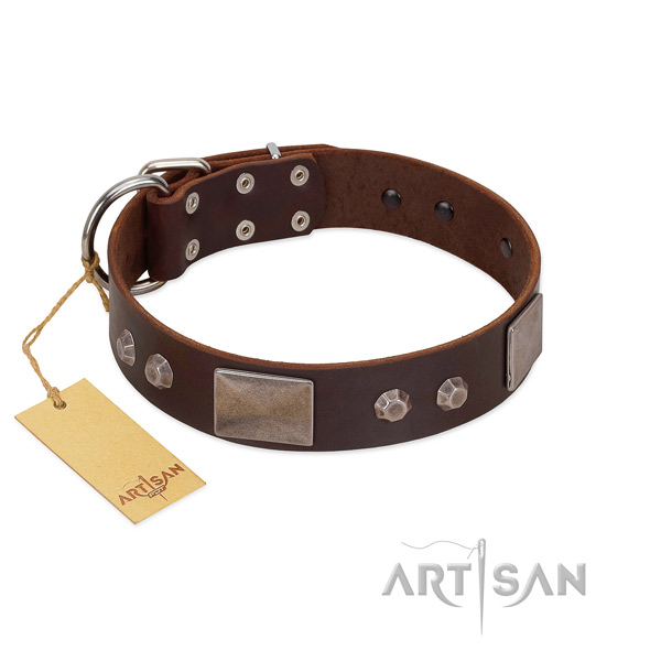 Easy to adjust genuine leather dog collar with corrosion resistant D-ring
