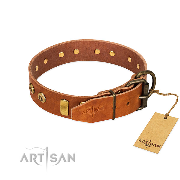 Trendy adorned full grain natural leather dog collar of top notch material