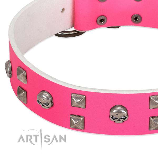 Full grain leather collar with exceptional adornments for your doggie