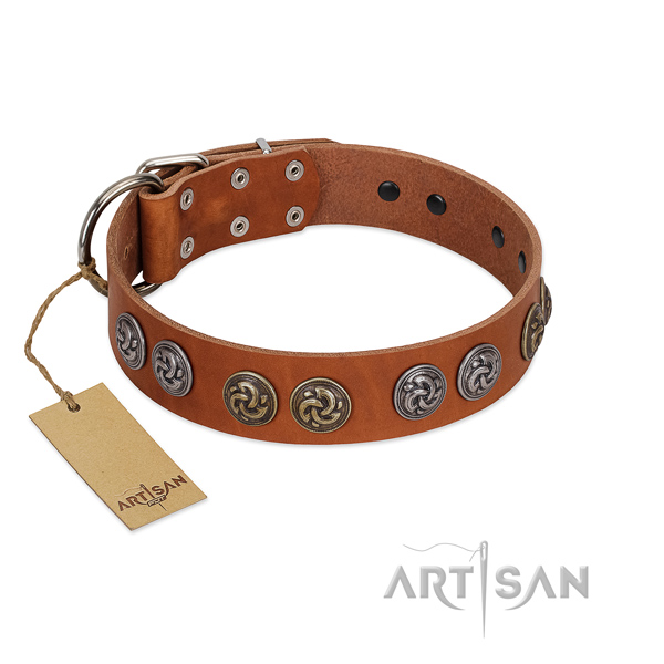 Corrosion resistant fittings on leather dog collar for comfortable wearing
