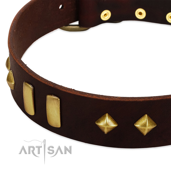 Reliable natural leather dog collar with awesome studs