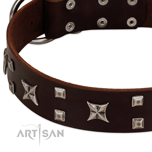 Top notch full grain natural leather dog collar with embellishments for handy use