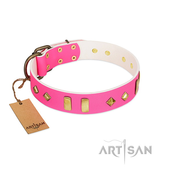 Leather dog collar with strong D-ring for stylish walking