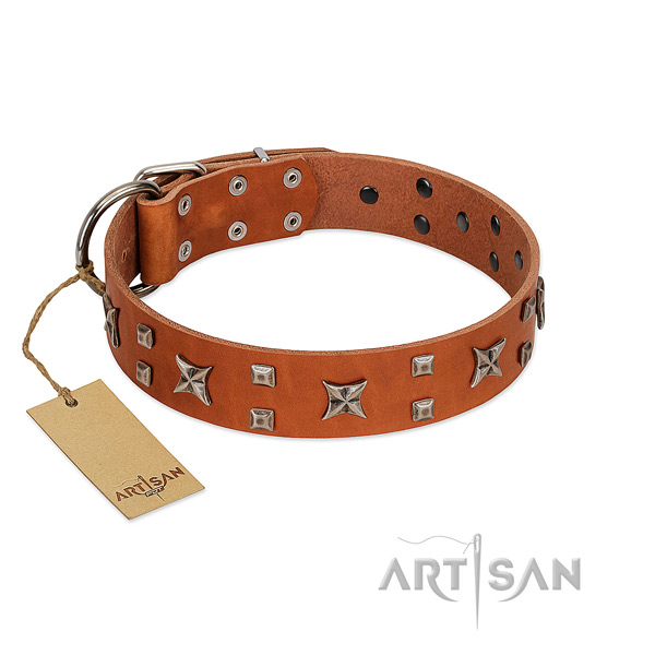 Reliable natural leather dog collar with decorations for comfy wearing