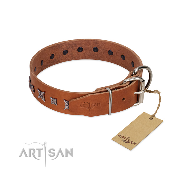Full grain leather dog collar with unique adornments created pet