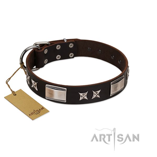 Embellished dog collar of leather