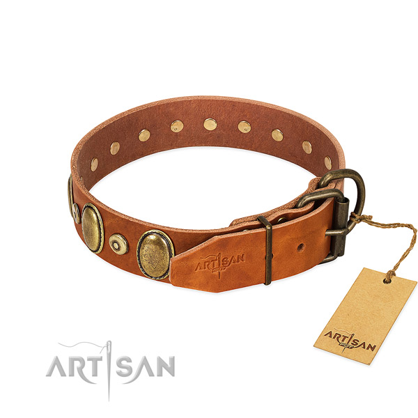 Corrosion proof traditional buckle on everyday use collar for your canine
