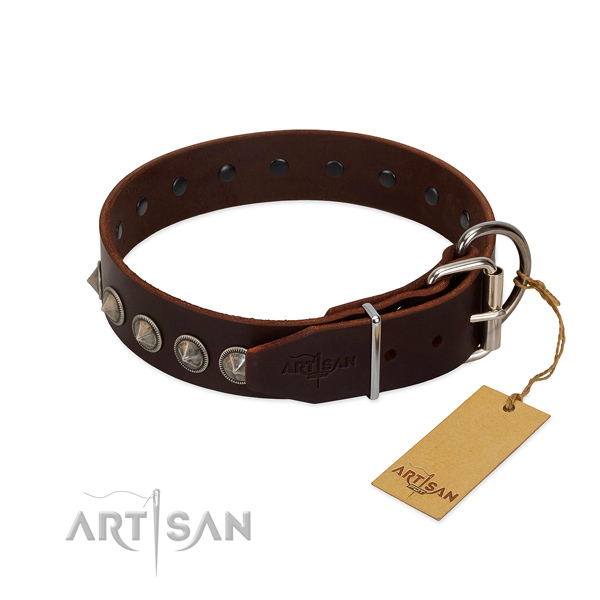 Remarkable embellished full grain leather dog collar for everyday use