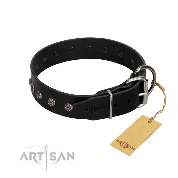 Top rate full grain natural leather dog collar with studs for fancy walking