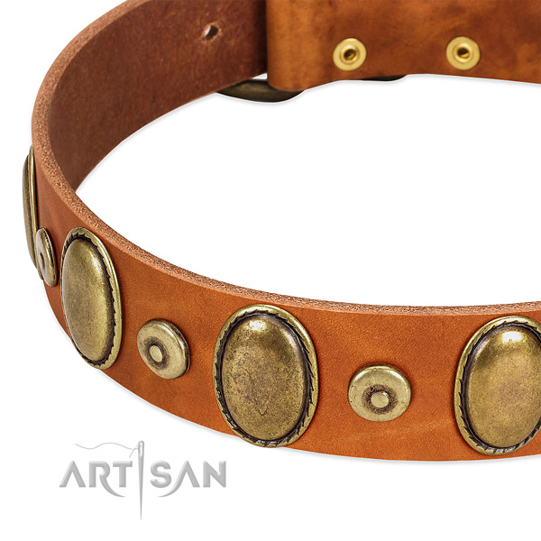 Easy wearing genuine leather collar for your beautiful dog