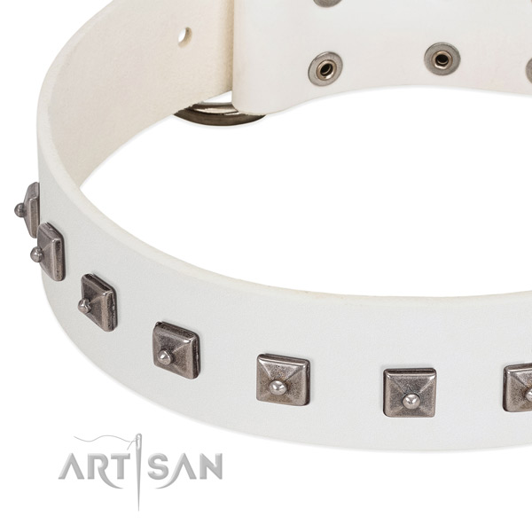 Gentle to touch genuine leather dog collar with unique decorations