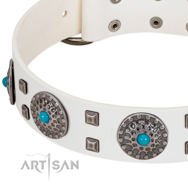 Flexible genuine leather dog collar with stunning embellishments