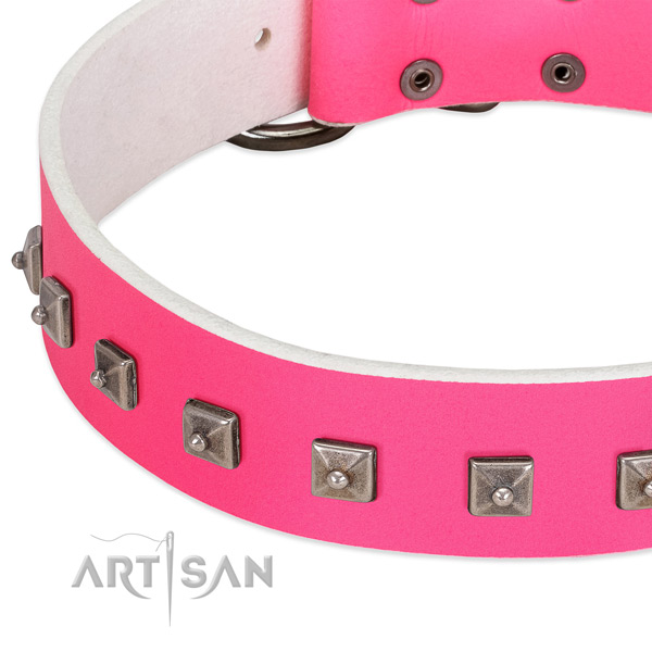 Soft leather dog collar with remarkable studs