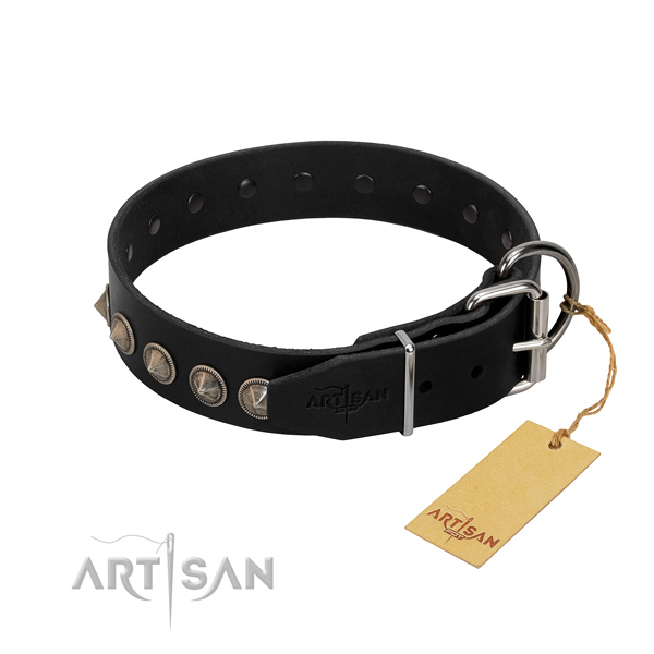 Natural leather dog collar with stunning adornments handcrafted four-legged friend