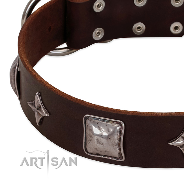 Walking leather dog collar with unusual adornments