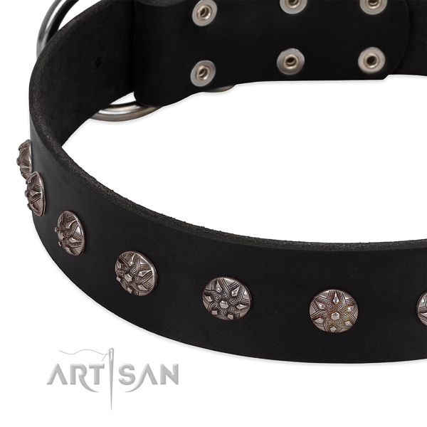 Top notch leather dog collar with amazing decorations