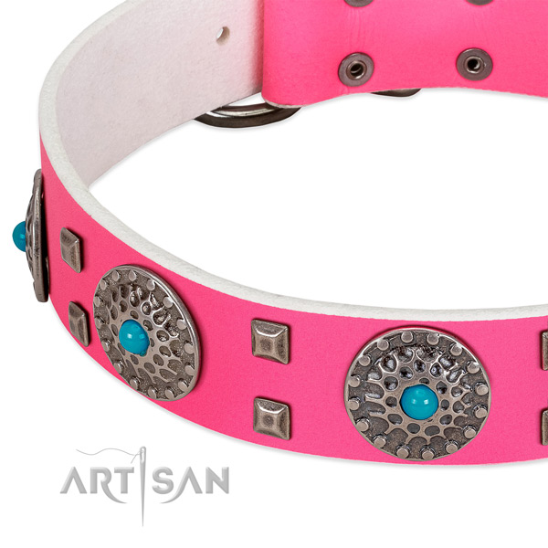 Top notch genuine leather dog collar with impressive adornments