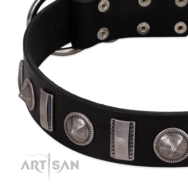 Stylish genuine leather dog collar with corrosion resistant adornments