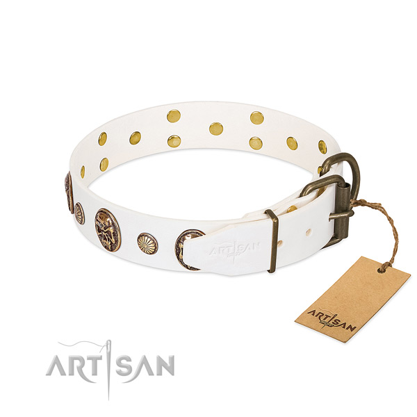 Rust-proof hardware on full grain genuine leather collar for basic training your doggie