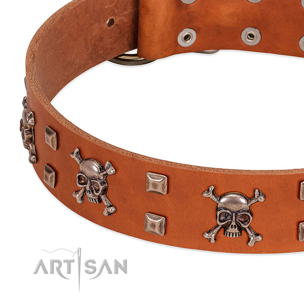 Stunning full grain natural leather collar for your canine