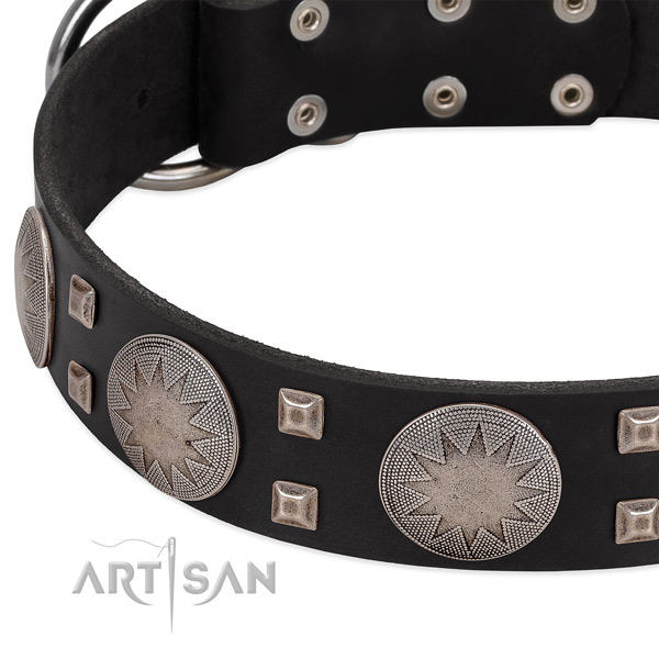 Amazing full grain genuine leather dog collar with rust resistant traditional buckle