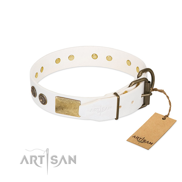 Corrosion resistant fittings on natural genuine leather collar for stylish walking your four-legged friend