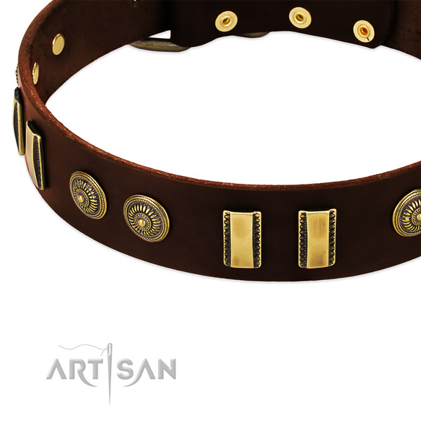 Strong embellishments on full grain leather dog collar for your pet