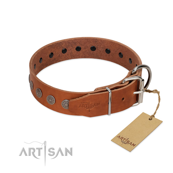 Stunning embellishments on leather collar for fancy walking your pet