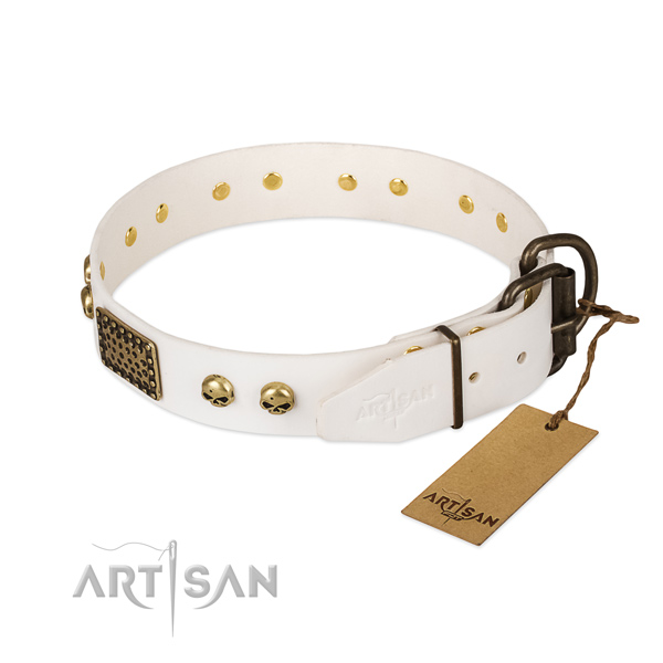 Easy wearing natural leather dog collar for everyday walking your dog